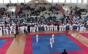 Tradicionalni međunarodni karate turnir u Vlasotincu (VIDEO)