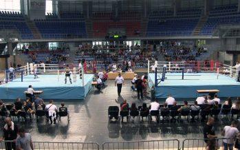 U Čairu održano državno prvenstvo u kik boksu (VIDEO)