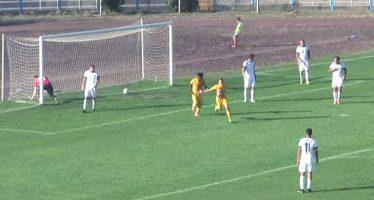 Dinamo bolji od Radničkog u Pirotu (VIDEO)