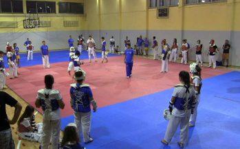 Taekvondo dani u Nišu uz svetskog prvaka (VIDEO)