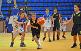 Velika smotra mini-basketa u Nišu