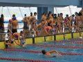 """Prvenstvo za """"školarce"""" u plivanju sve masovnije (VIDEO)"""